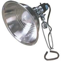 Coleman Cable 0151 6-Foot 18/2 SPT Reflector Light with 8.5-Inch Reflector